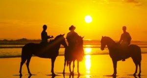 Paseos a caballo por las costas de Nuevo Vallarta