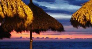 Rusticos bares con techos de palapa para disfrutar de la noche en Costalegre