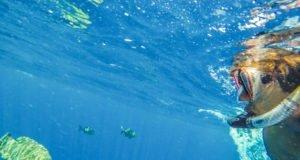 Punta Mita Adventures, tirolesas, snórkel, buceo y muchas aventuras más para disfrutar en familia