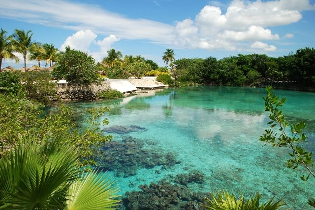 Visit the Cozumel Reef National Park a beautiful protected area in Cozumel