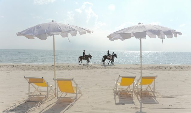 Horseback Ride Down the Sandy Beaches of Cancun