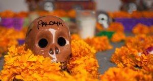 7b3cd641ab7ca Festival de Tradiciones de Vida y Muerte en Xcaret