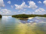 bb16a8f56c5ab Playa del Carmen  disfruta de su ambiente caribeño y finos mantos de blanca  arena DestinosFun