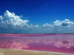 Las Coloradas: un horizonte repleto de colores en Yucatán