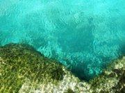 Cenotes, formaciones naturales y sagradas para contemplar en Riviera Maya