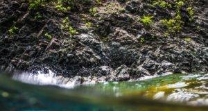 Conoce el Cenote Azul en Chetumal