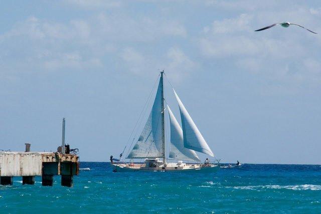 Tarde de pesca deportiva en Playa del Carmen